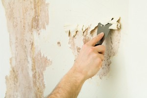Mayfield Heights Wallpaper Removal Wallpaper Removal